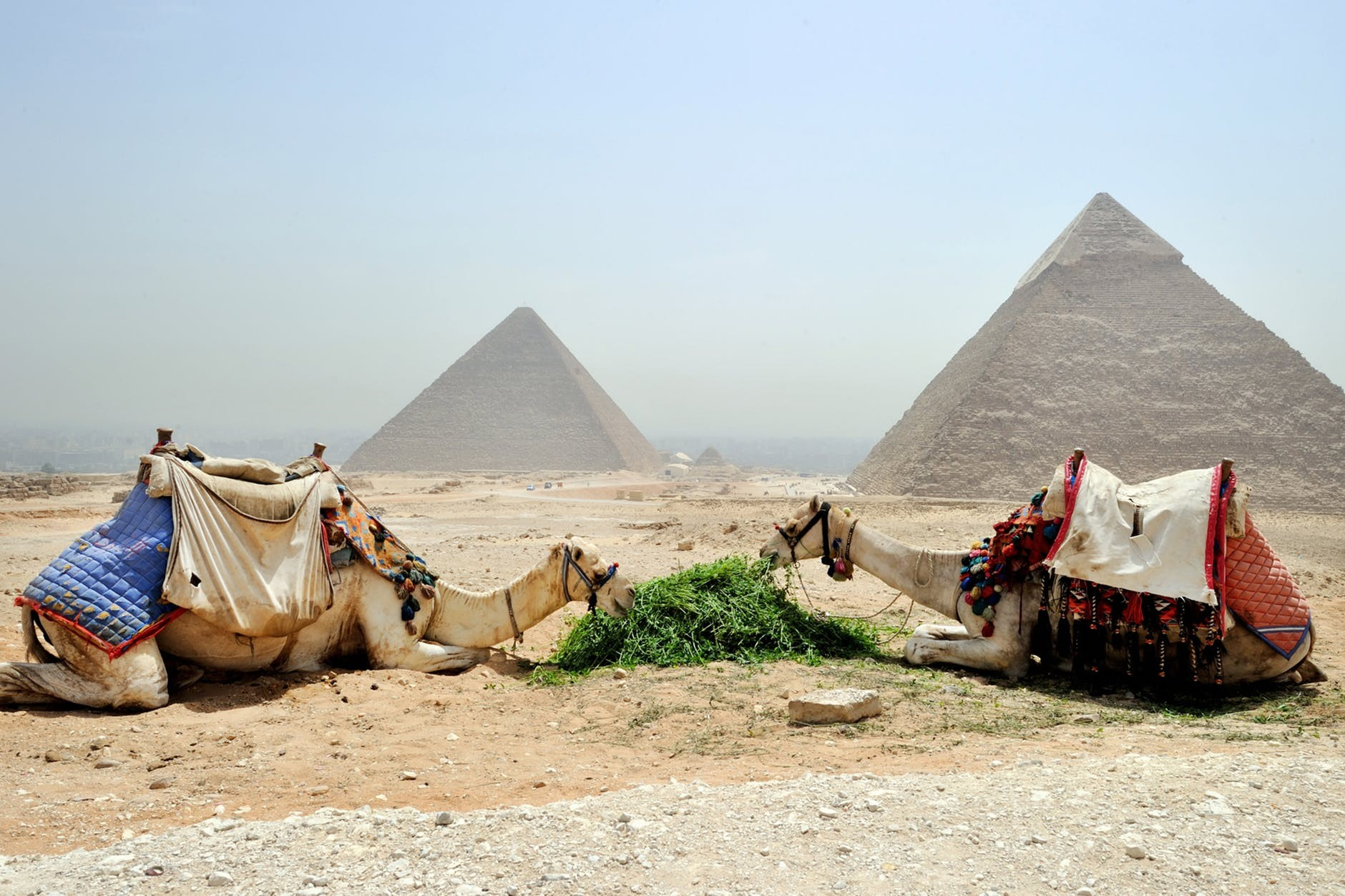 Budget Day Trip to Cairo from Hurghada by Road